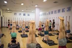 jia teaching sarvangasana 4-4887